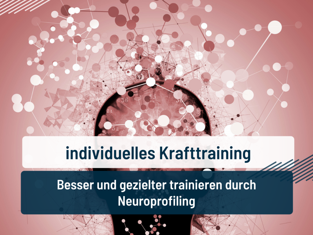 individuelles krafttraining; neuroprofil; braverman test; coach dave